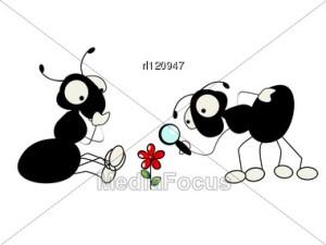Priče.....  - Page 7 Ants