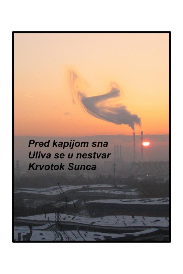 Nataša Stanić, Haiga2