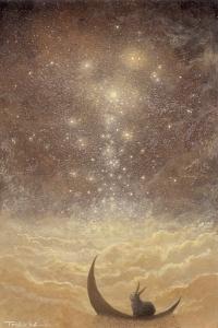 star_falls_by_ebineyland-d4kq55d