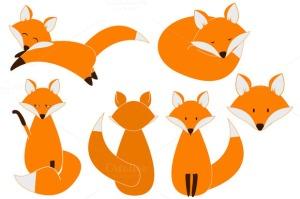 fox-f